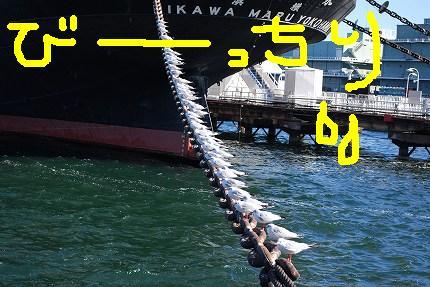 22yamashita (5).jpg