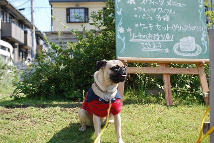 23日カフェ前 (1).jpg