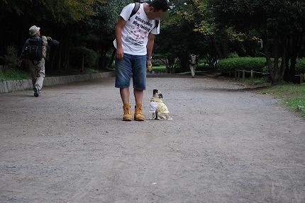 お散歩 (2).jpg