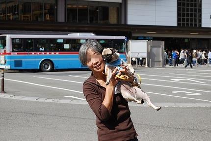 鎌倉散歩~お昼.jpg