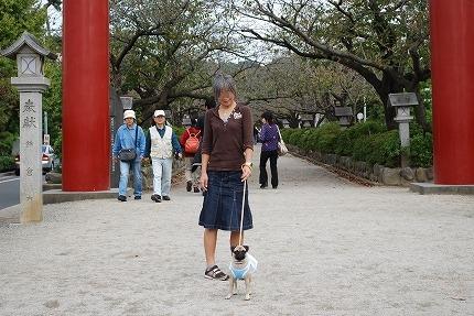 鎌倉散歩~お昼 (1).jpg