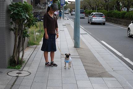 鎌倉散歩~お昼 (2).jpg