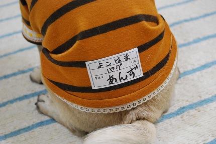 yarisugi (4).jpg