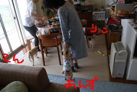 623yukata1_10